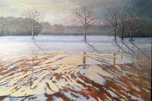 sneeuwlandschap-deventer